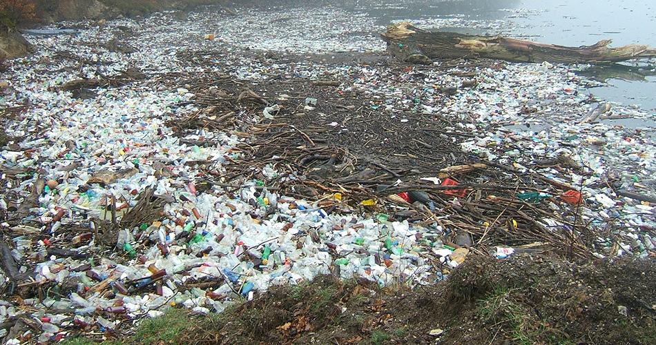 Plastikflaschen im Meer und an Land
